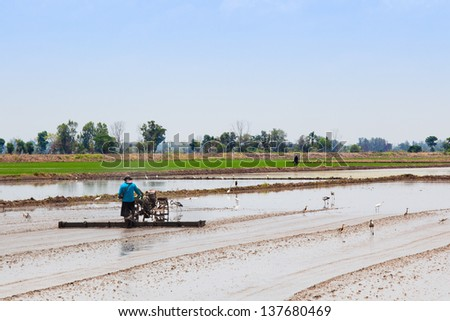 Thai farmer plowing his farm with small tractor