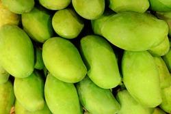 Thai green mango