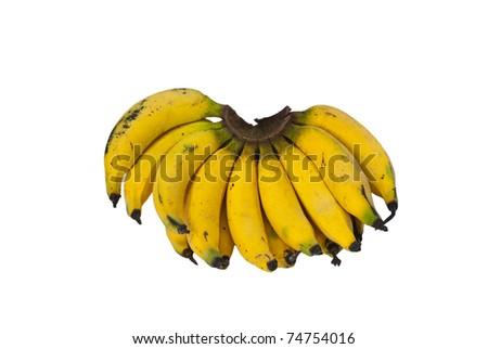 Thai local banana isolated on white background