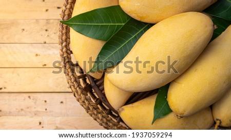 Thai mango, Yellow ripe mango (Nam Dok Mai) Sweet Thai Fruits Stock fotó ©