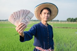 Thai Money banknote holded by Asian farmer man wears blue shirt at green rice farm. Focus at banknote and blur man. Selective focus image.