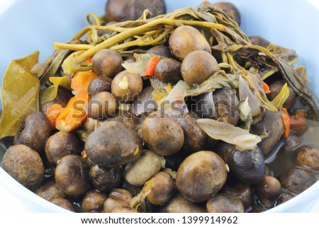 Thai mushroom soup ,puff ball ,Barometer Earthstars, hygroscopic earthstar, false earthstar,(Astraeus hygrometricus