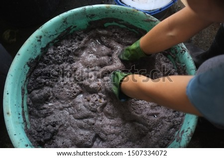 Thai natural dye , Raw water material black dye from Thai herb for Dewormed or ebony . The woman is ebony dye