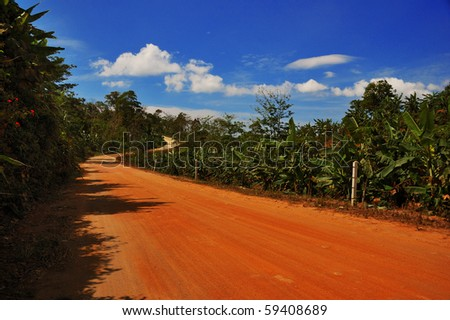 Thai road in the jungle under the blue sky