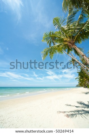 Thailand. Scenic view on island Koh Chang. Relaxing under a palm trees on loneliness beach
