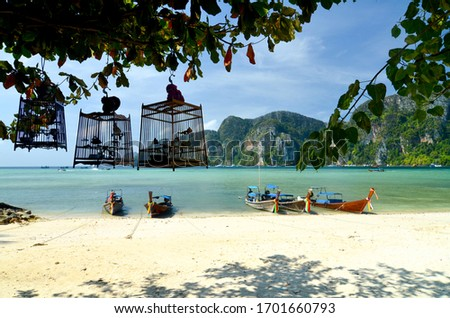 Thailand. The Island Of Phi Phi. Phi Phi Don. Beautiful view of an exotic Thai beach and Bay with traditional Thai birds in cages and longtails (traditional Thai boats). Beautiful exotic background