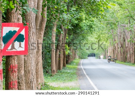 Thailand, Tree lined street in abundance. Trees are not cut down trees to make a road be cool and pleasant.