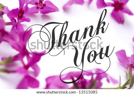 Thank You card with pink phlox background and elegant script text (public domain free type).