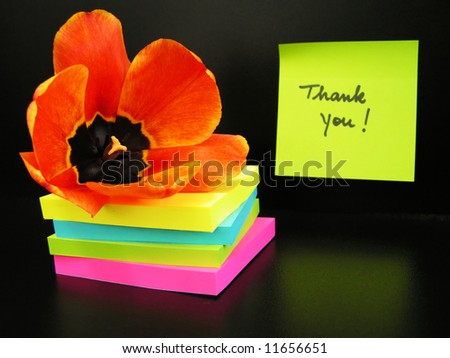 Thank you message and red tulip on black background