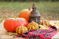 Thanksgiving Day. Autumn pumpkin  harvest.Set of pumpkins, checkered scarf, iron old lantern on a wooden table on a blurred autumn garden background.Autumn pumpkin abundance. Fall cozy mood