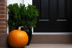 Thanksgiving decorated front door with pumpkin and potted plant. Autumn season.