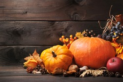 Thanksgiving - different pumpkins with nuts, berries and grain in front of wooden board