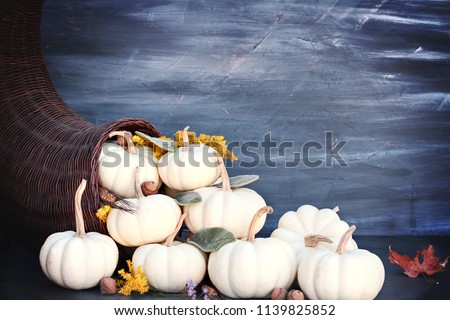 Thanksgiving or Halloween cornucopia or Horn of Plenty against a dark background with mini white pumpkins, acorn and Autumn wildflowers spilling out. Free space for text.