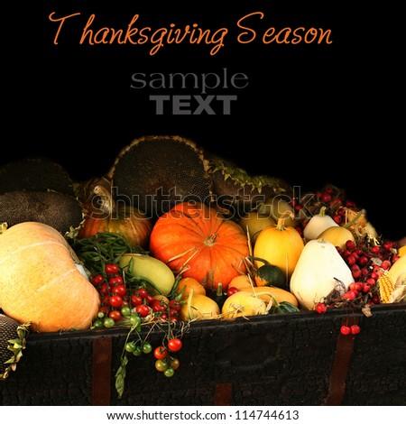 Thanksgiving Season