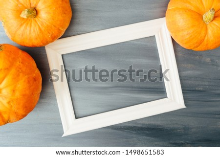 Thanksgiving season still life with orange pumpkins and with white frame for picture over rustic gray wood background Thanksgiving and Halloween concept. Copy space for text and design