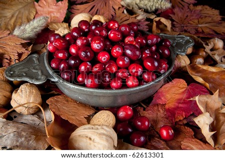 Thanksgiving still-life with cranberries, autumn leaves and nuts - stock photo