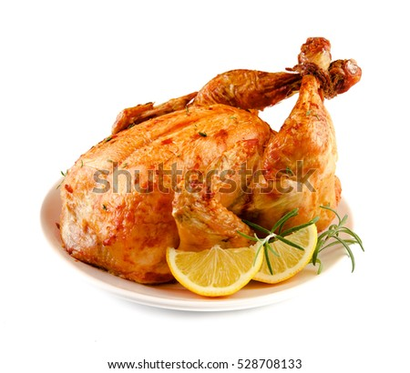Thanksgiving Turkey isolated on white background. Front view.
