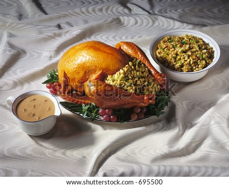 Thanksgiving Turkey with Dressing and Gravy Boat