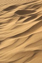 thar desert in India sand dunes