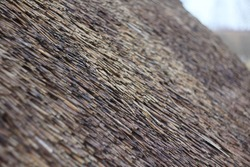 Thatched roof texture. Antique thatched roof. Thatched roof close-up.