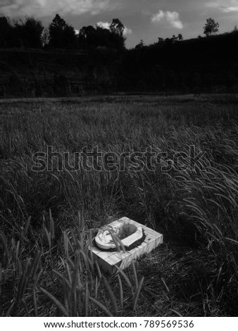 The abandoned toilet is in the wilderness with grass up.