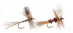 The Adams and Royal Wulff; Most Famous and Productive Fly-Fishing Flies for Trout