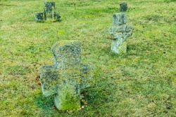 The ancient christian tomb crosses  with runes covered with moss and lichen among green grass on the cemetry