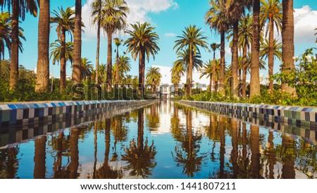 The Arab League Park (Parc de la Ligue arabe ) is an urban park in Casablanca, Morocco Photo stock ©