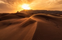 The Arabian Sunset