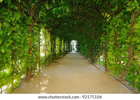 The arch, decorated with plants