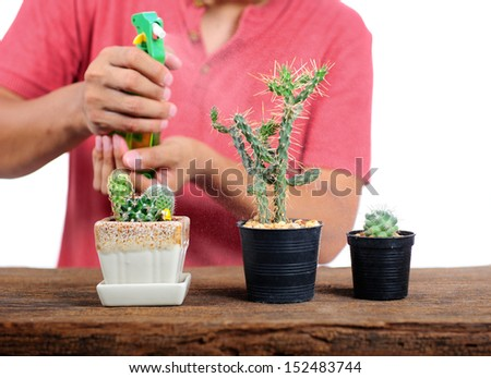 The asian man watering his cactus