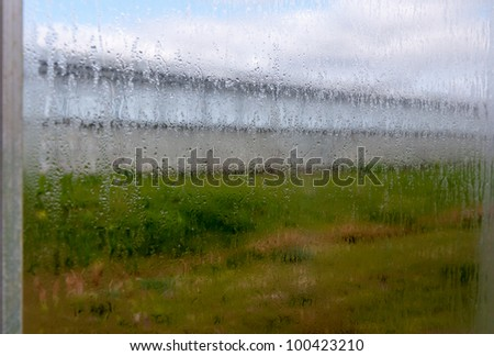 The atmosphere in the modern Dutch flower and plant nurseries is very humid. This is a closeup of the steamed windows.