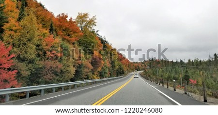 The autumn foliage flanks roadways and highways.