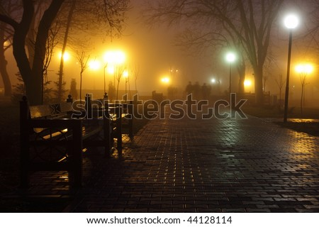 The avenue of city park is shown at night in a fog