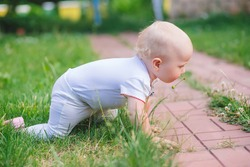 The baby crawls on the green grass. Kid in white clothes in outdoor learns to crawl. Toddler walks in backyard of home in the summer