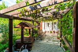 The back yard of the cottage with a wooden canopy made of beams - pergola. Grapes grow on the bars and create a shadow. Clusters of grapes are visible. There are paving slabs on the ground