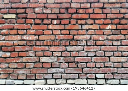 The background is an old brick wall. The wall is made of red ceramic bricks.