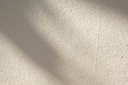 The background of the beige cement wall has a dark shadow overlay from the sunlight.