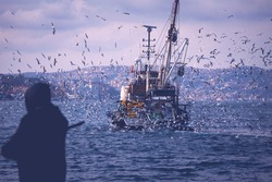 The backside look of a fishing boat in Istanbul bosporus while seagulls are chasing the boat to catch fish from its net. Seagulls are after the fishing boat. Fisherman in silhouette in front.