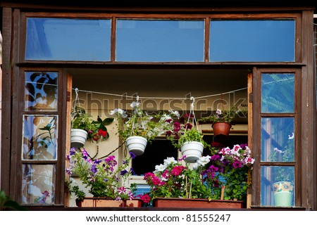 The balcony with flower pots and flowers blooming