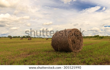 the bale of hay lying on the field against the sky