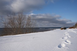 The Baltic Sea beach is snowy white in winter and the trees have no leaves, human footprints in the snow