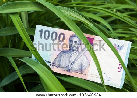 The banknote - Rupiah bill of Indonesia