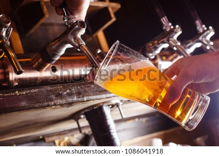 The bartender pours fresh light beer