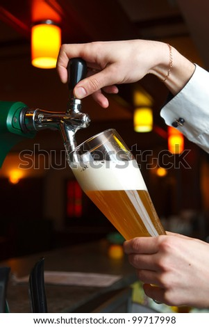 the bartender pours the beer into a glass from the tap