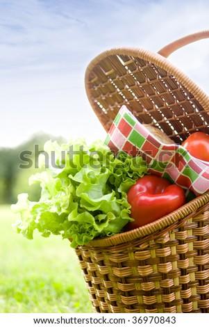 the basket full of fresh vegetables on the grass