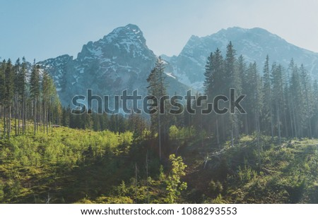 The Bavarian Alps are part of the Alps and are located in Germany. #1088293553