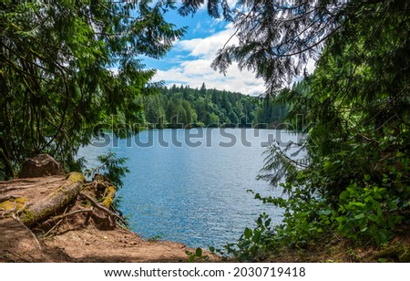 The beach at the forest lake. Forest lake view. Forest lake beach. Lake in forest