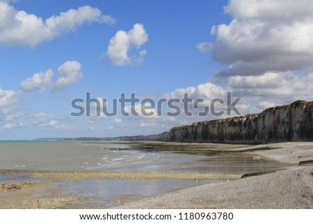 the beautiful alabaster coast with low tide in summer with a blue cloudy sky in normandy france #1180963780