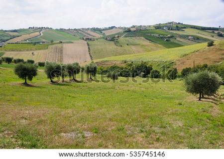 the beautiful hills around teramo which produces the Montepulciano D'Abruzzo #535745146